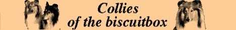 Collies of the biscuitbox
