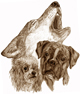 Dog´s Nature - Hundeschule und Hundepension